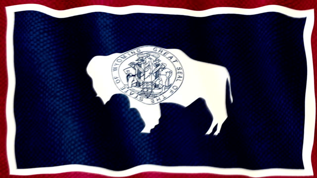 Wyoming flag waving animation video