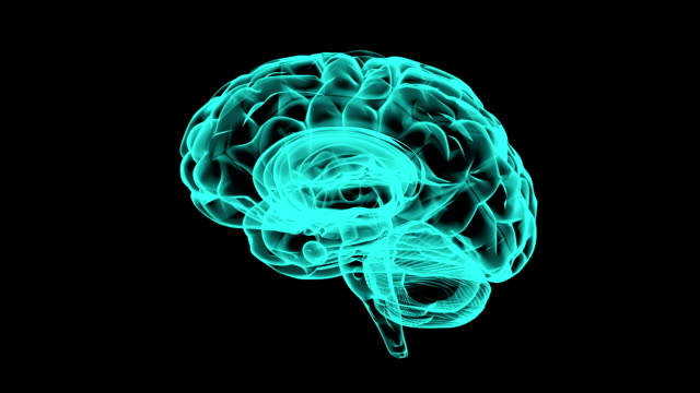 X-ray 360 degree brain. Medical video background. video