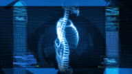 X-Ray of Human Spine (HD) video
