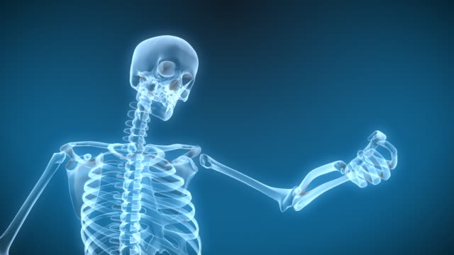 X-Ray Skeleton Arm move video