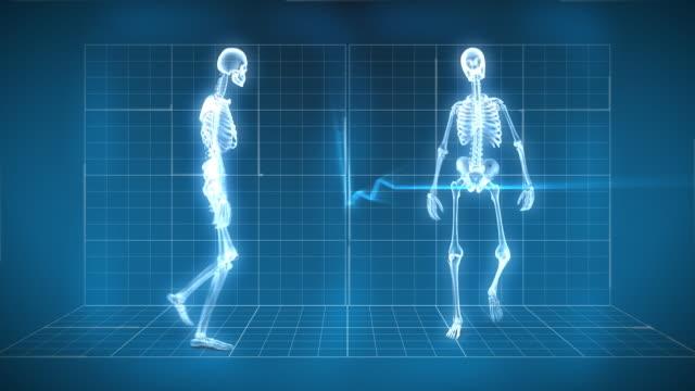 X-Ray Skeleton Walking video