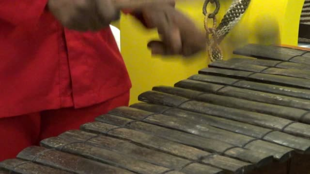 Xylophone, Percussion, Musical Instruments video