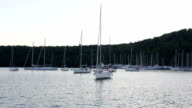 yachts in bay at sundown video