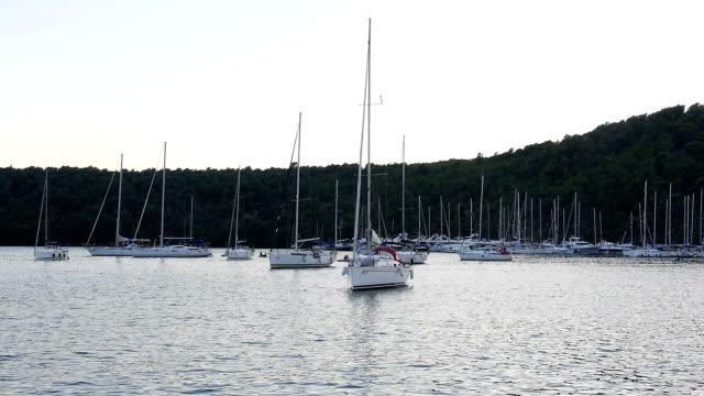 yachts in bay at sundown video