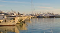Yachts in Cannes Marina video