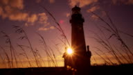 Yaquina Head Lighthouse at sunset video