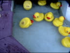 Yellow Rubber Duckies Floating by in Water 5 video