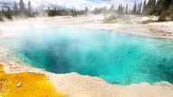 Yellowstone National Park Geyser video