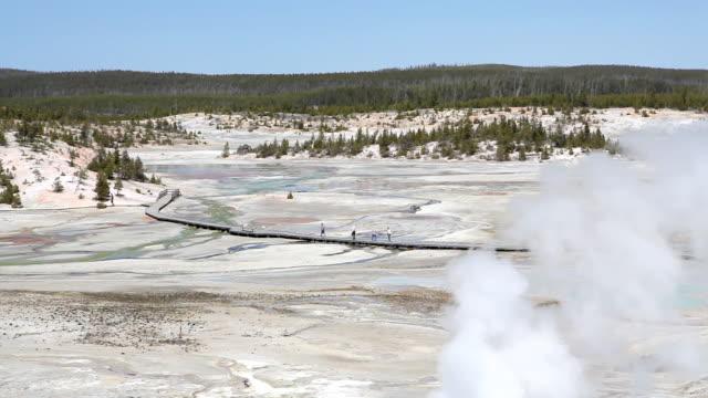 yellowstone national park - tourists walking amongst geysers video