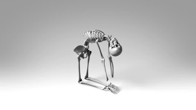 Yoga Camel Pose Of Human Skeletal video