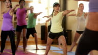 Yoga Fitness Class video