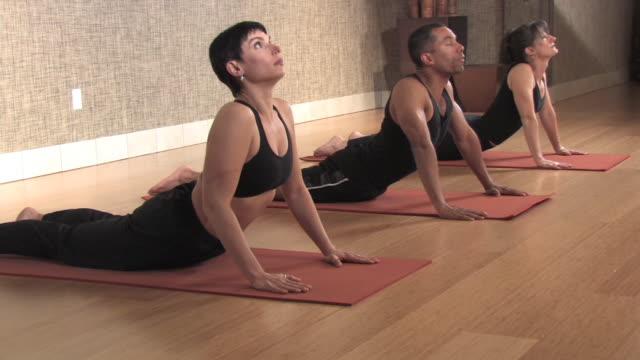 Yoga Group Doing Upward Dog video
