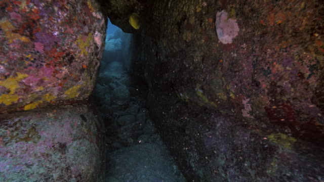Yonaguni Monument video