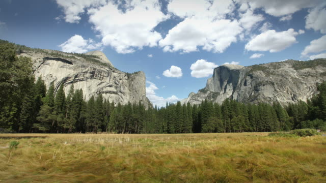 Yosemite National Park video