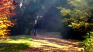 Youg man strolling alone in the park video