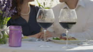 Young adult couple having a romantic dinner outdoors video