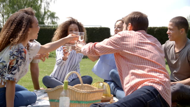 Young adult friends at a picnic drinking and talking video