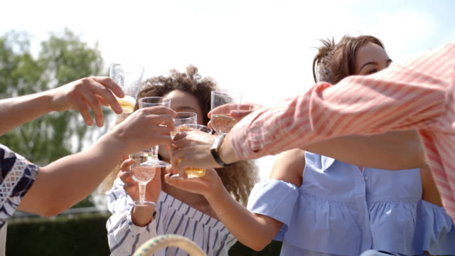 Young adult friends making a toast at a picnic, close up video