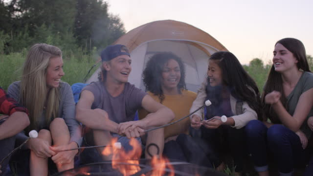 Young Adults having a Campfire video