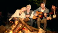Young adults sit around a camp fire at night video