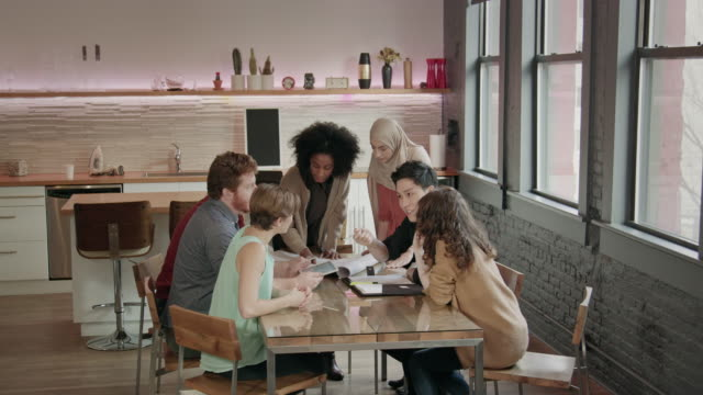 Young African-American Woman Leads Multi-Ethnic Team Meeting WS video