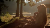 Young and gorgeous forest dryad in the Carpathian mountains basking in the sun and softly smiling. Mysterious mountain world video