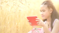 Young asian girl using tablet in the wheat field video