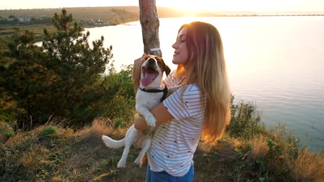 Young attractive woman playing with a dog Jack Russell in the meadow at sunset with sea background. slow motion video