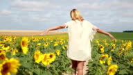 Young attractive woman walking in sunflores field video