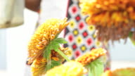 Young beautiful African woman waters her flowers video