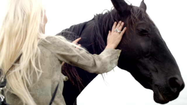 Young blonde smiling woman in nature outdoor stroke and hug black horse - slow-motion HD video footage video