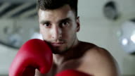Young boxer wipes sweat from his forehead and looks into the camera lens. video
