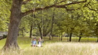 SLO MO DS A young boy and a girl swinging under a big tree video