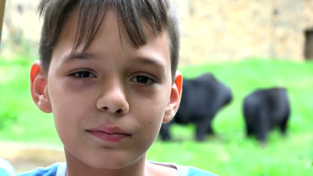 Young Boy At Zoo video