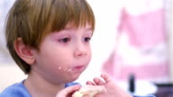 Young boy eating a sandwich for breakfast video