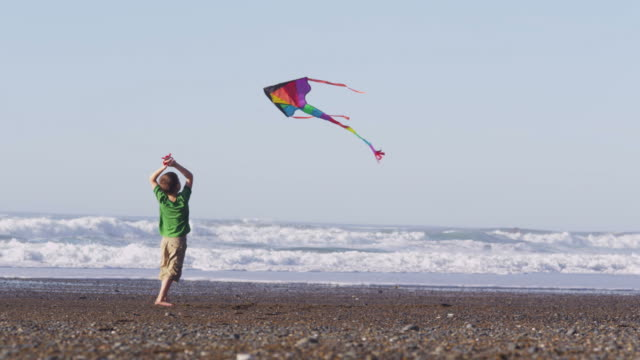 Young boy flying kite at beach, slow motion video