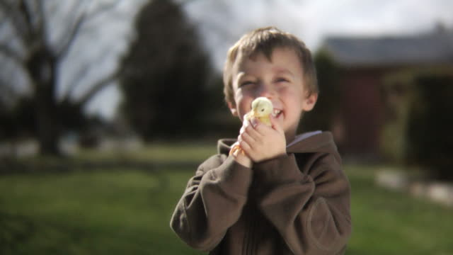 Young boy holding baby chick video