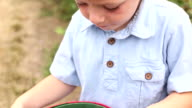 Young boy holding bucket of blueberries video