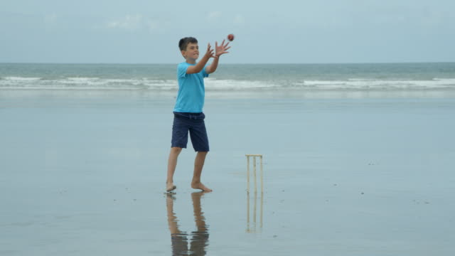 A young boy playing cricket as wicket keeper catches the ball and hits the stumps. video