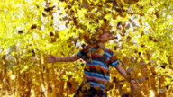 Young boy playing in fall leaves, slow motion video