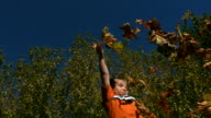 Young boy throwing leaves into air, slow motion video
