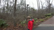 Young boy walking along a path with dinosaur models video