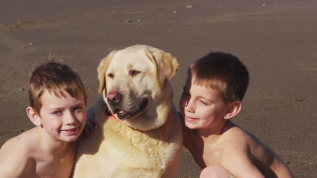 Young boys and dog at the beach video