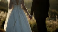 young bride and groom at sunset holding hands video