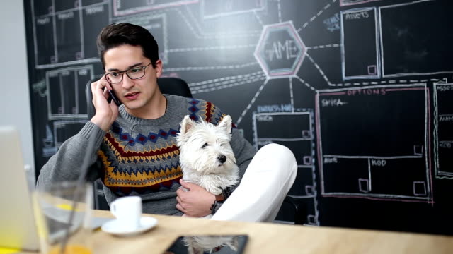 Young casual businessman work in office with his dog video