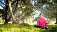 Young caucasian woman sitting under the tree and meditating video