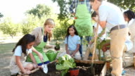 A young Caucasian woman teaches elementary students how to plant pepper plant video