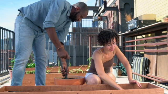 Young couple adding soil to a planter box video