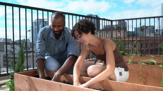 Young couple having fun gardening together video