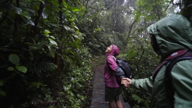 Young couple in jungle video